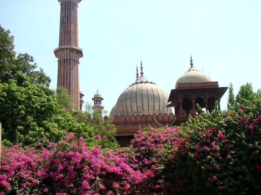 meczet-w-new-delhi